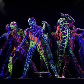 Show Art Color Ballet Baletcolor